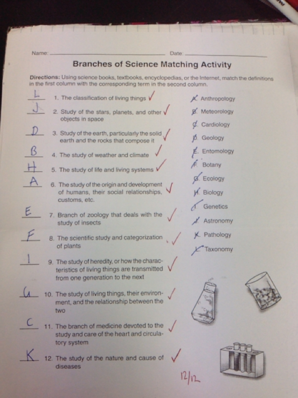 Worksheet Branches Of Science Worksheet branches of science matching activity jasmines blog this is my worksheet for i got 1212